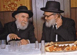 Kamenetsky Yaakov YWN