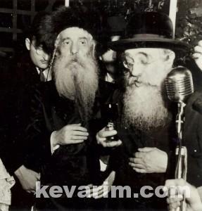 Halpren Yisroel Aryeh Leib pic