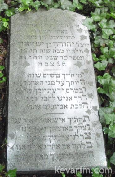yehuda-barit-bayside