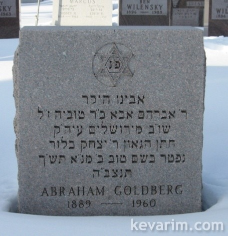 goldberg-avraham