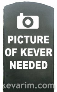 pic-kever-needed[1]