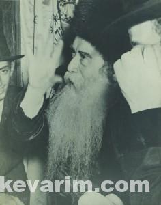Perlow Yehuda Pic