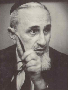 Soloveitchik YD pic