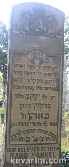 Rabbi Yaakov Cohen