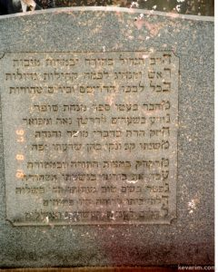 back-of-grave-rabbi-shoenbrun