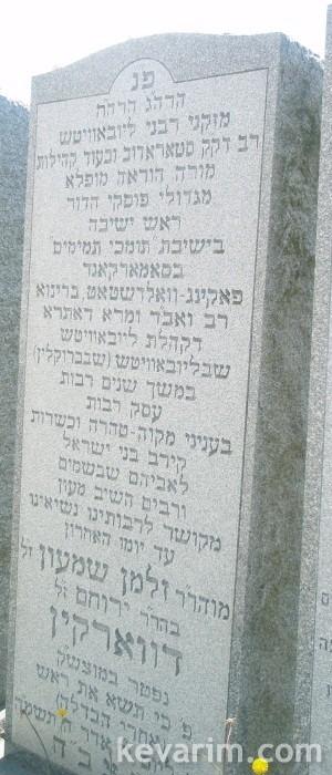 Rabbi Zalman Shimon Dworkin