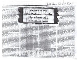 Levine Zalman Albany Yated 1